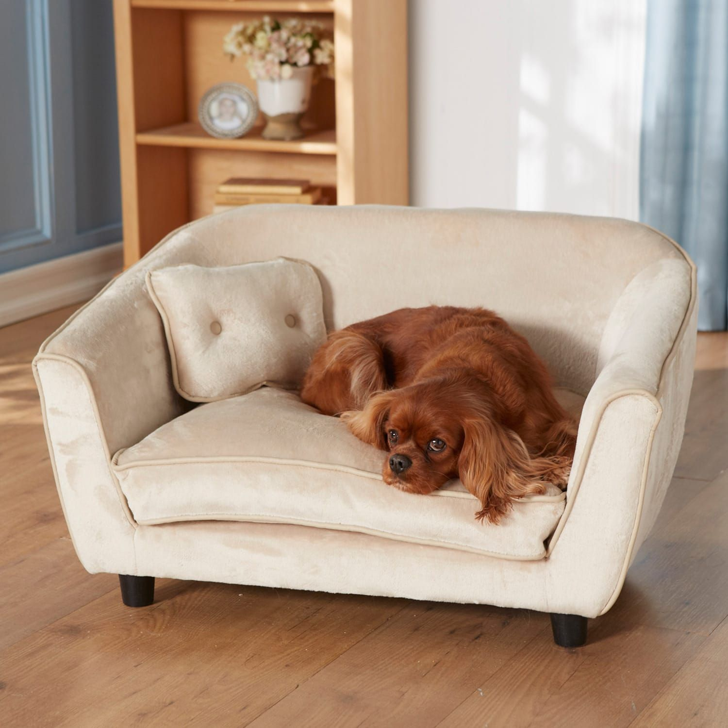 Enchanted Home Pet Ultra Plush Astro Sofa Dog Bed 32 5 L X 22 5 W In 2020 Dog Sofa Bed Pet Furniture Dog Bed