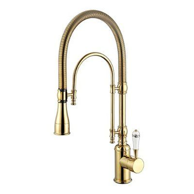 Platizon Gold Pull Down Kitchen Faucet Single Level With Stainless