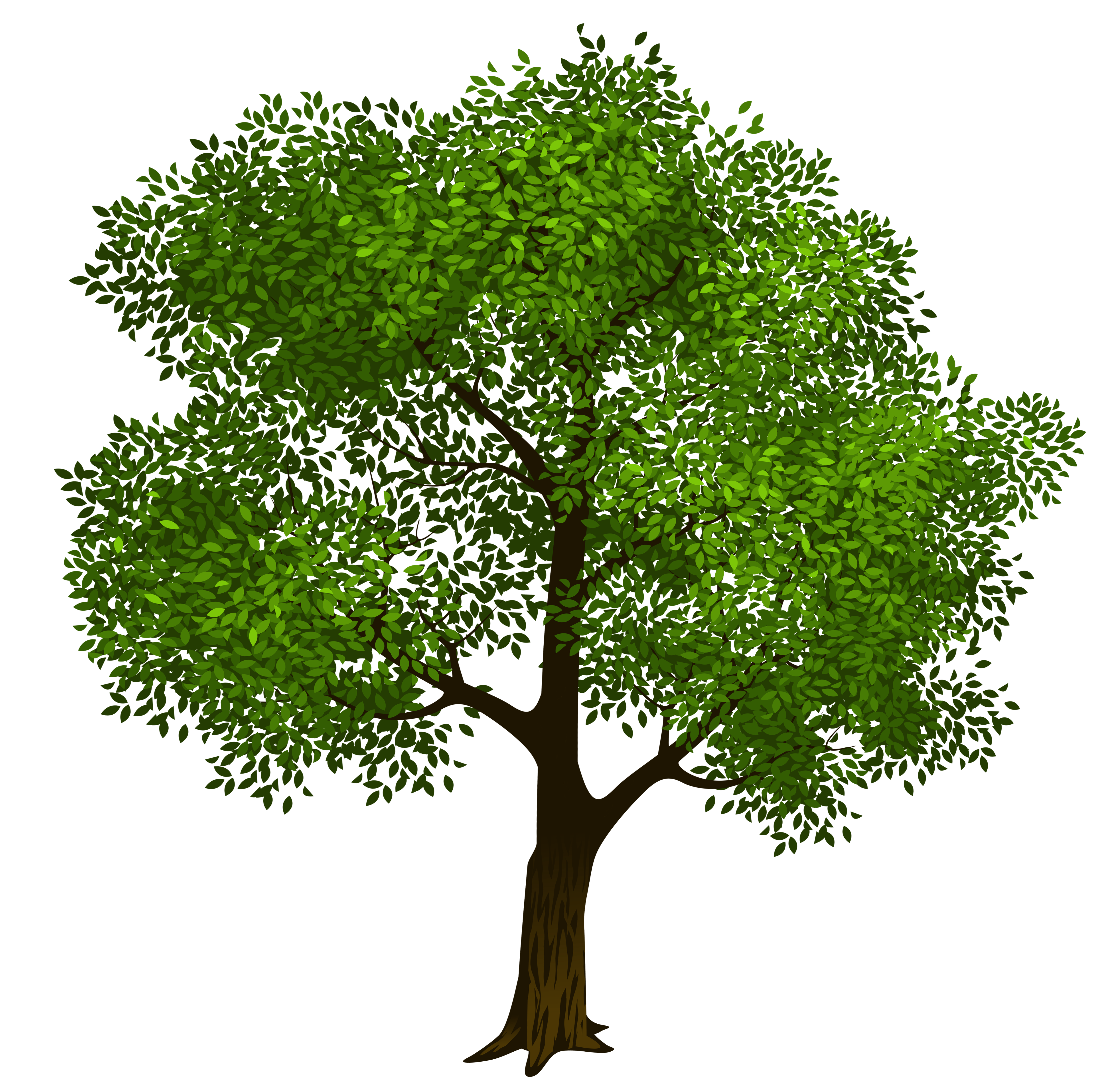 Family tree clipart free clipart images - Cliparting.com ...