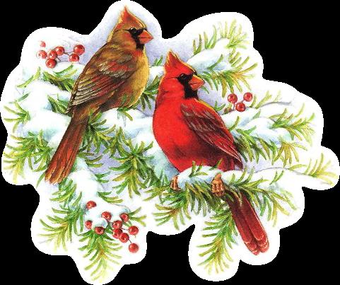 Christmas Cardinals Images.Christmas Cardinals Clip Art Clip Art Christmas 1
