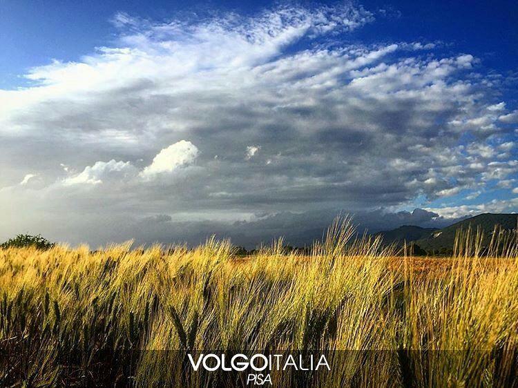 Vecchiano-Pisa-Italia  Foto di @costantino.serratore #toscana #tuscany #italia #italy #pisa #vecchiano #italytrip #italytour #travelingram #madeinitaly #volgopisa #volgotoscana #volgoitalia #tourism #turism #turismo #instatravel #iloveitaly #volgosocial by volgopisa