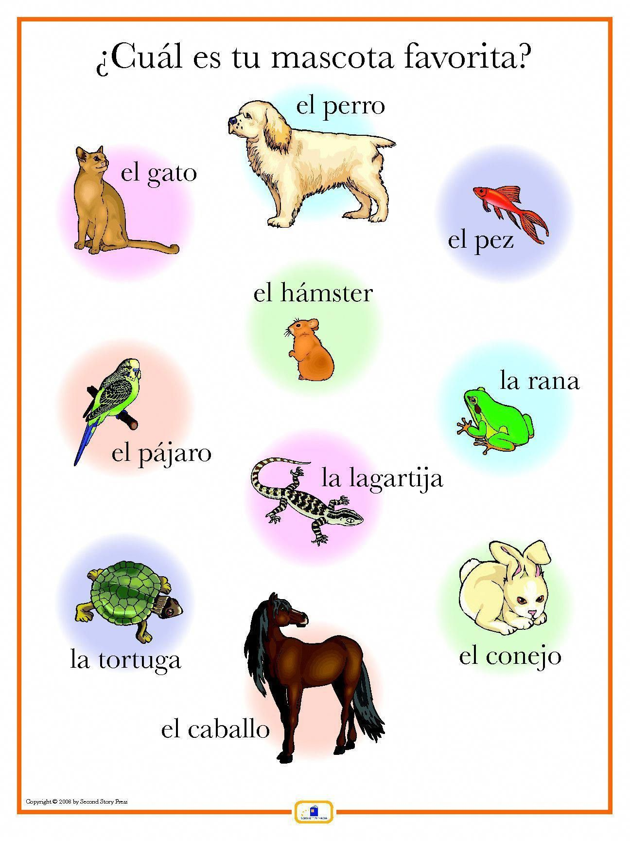 Pin On Learn Spanish Today