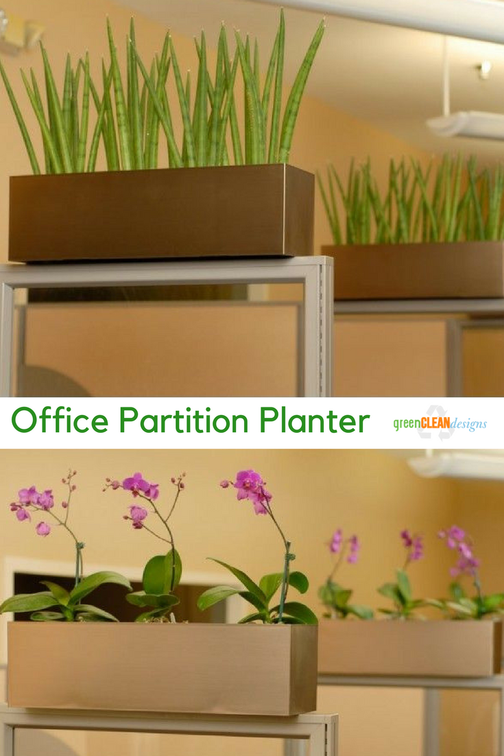 Cubicle Wall Planter Cubicle Accessories Greencleandesigns In 2019 Myboard
