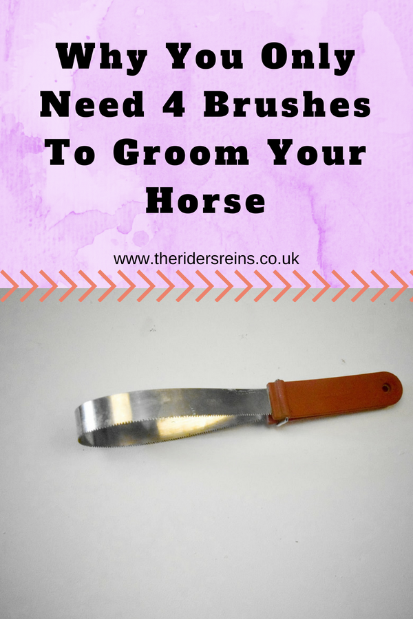 Why You Only Need 4 Brushes To Groom Your Horse Horse Care Tips