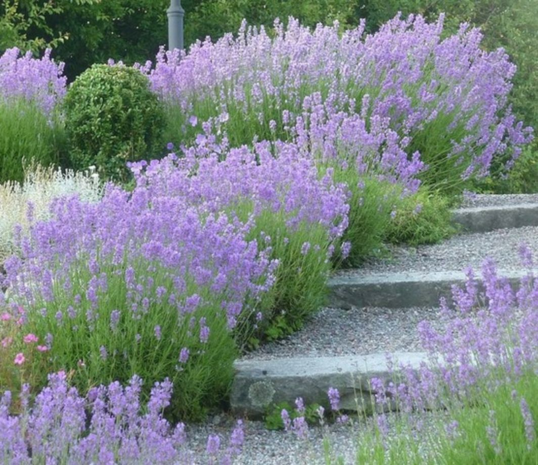 21 Landscaping Ideas For Slopes: Stunning Stone Garden Path Ideas 21