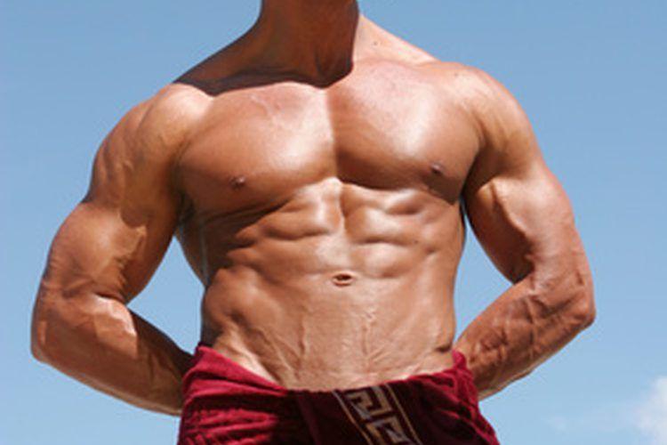 Cómo crear rápidamente músculos abdominales. El recto abdominal y ...