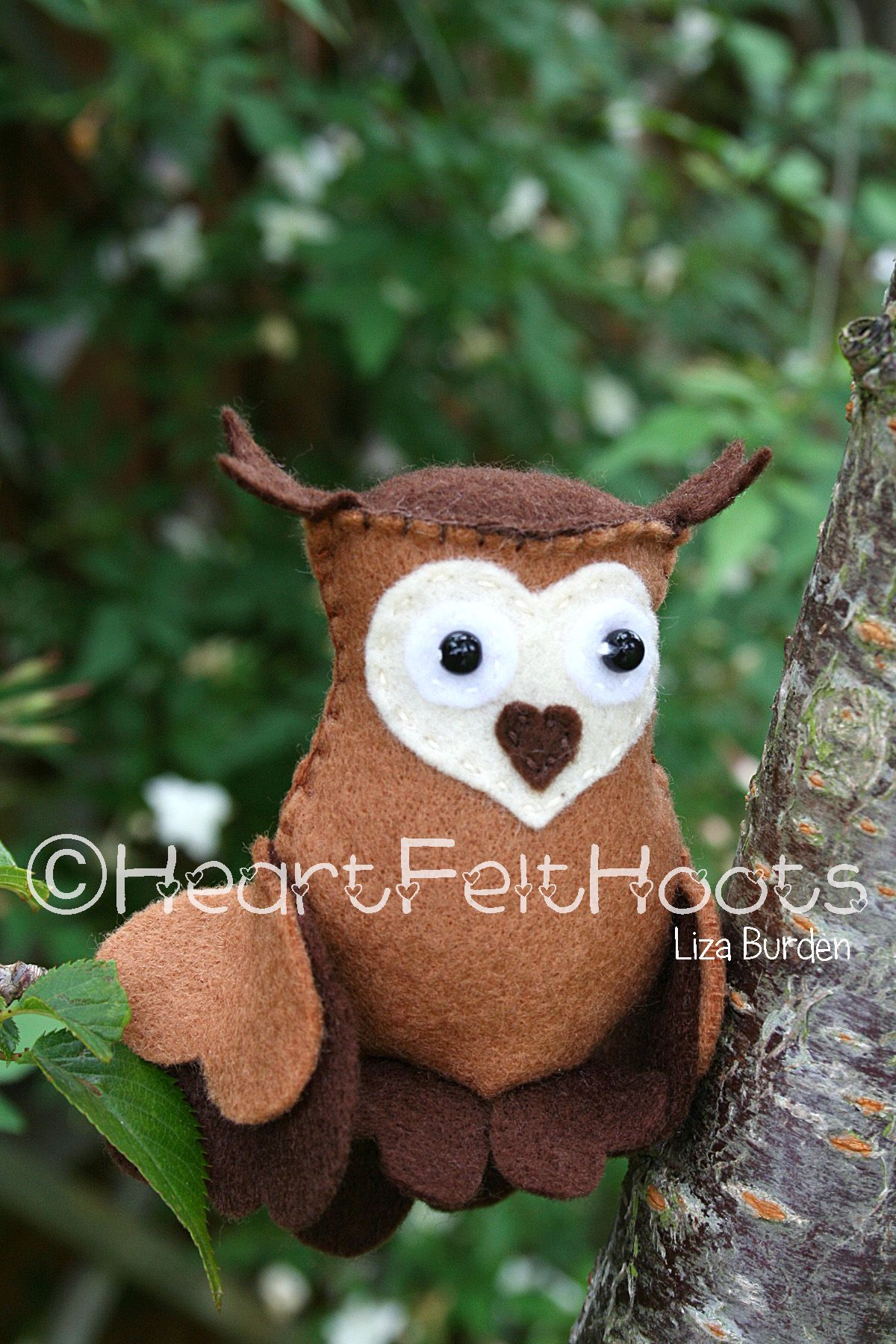 This is Hazelnut. Please find more details on my Facebook page - HeartFelt Hoots.