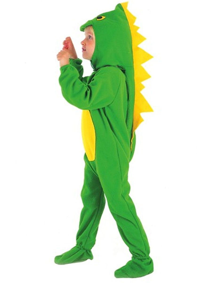 Child Pterodactyl Dinosaur Costume Boys Girls Book Week Day Fancy Dress Outfit
