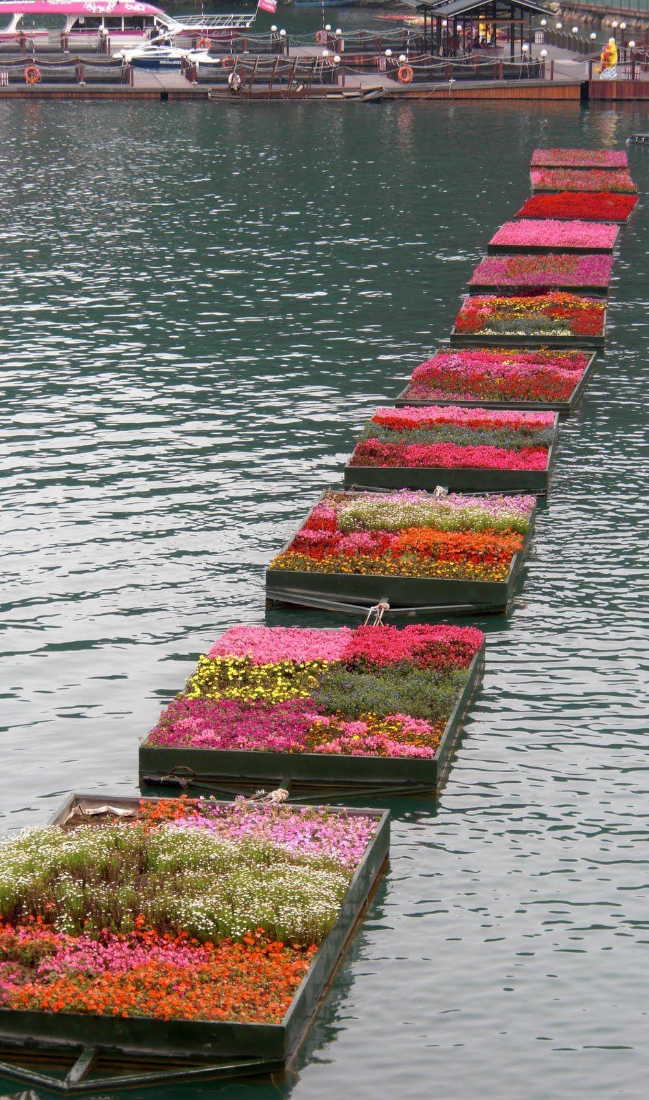 Pam Drijvende Tuin In Bloei Floating Garden Landscape 640 x 480