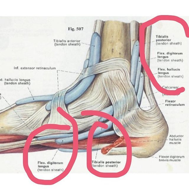 "Let's talk a little about ""plantar fasciitis."" 👣 Most of ..."