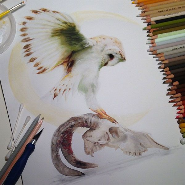 Pencil and Ink: the amazing photorealistic drawings by Karla Mialynne
