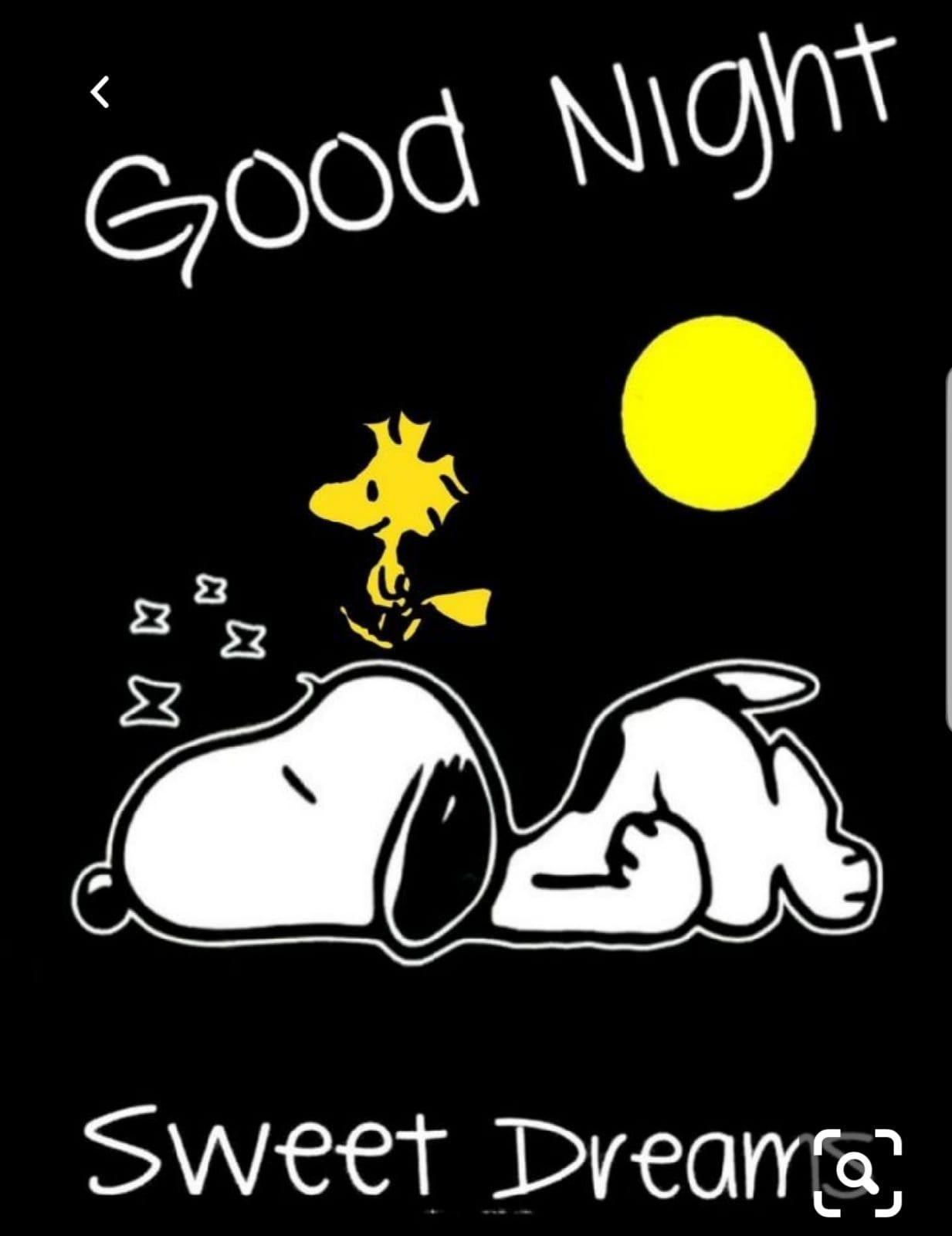 Pin Von Monika Kuchem Auf Gute Nacht Schönen Abend Snoopy Bilder Snoopy Zitate Gif Bilder Gute Nacht