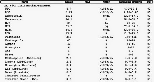 complete blood count  an example of how a normal report of