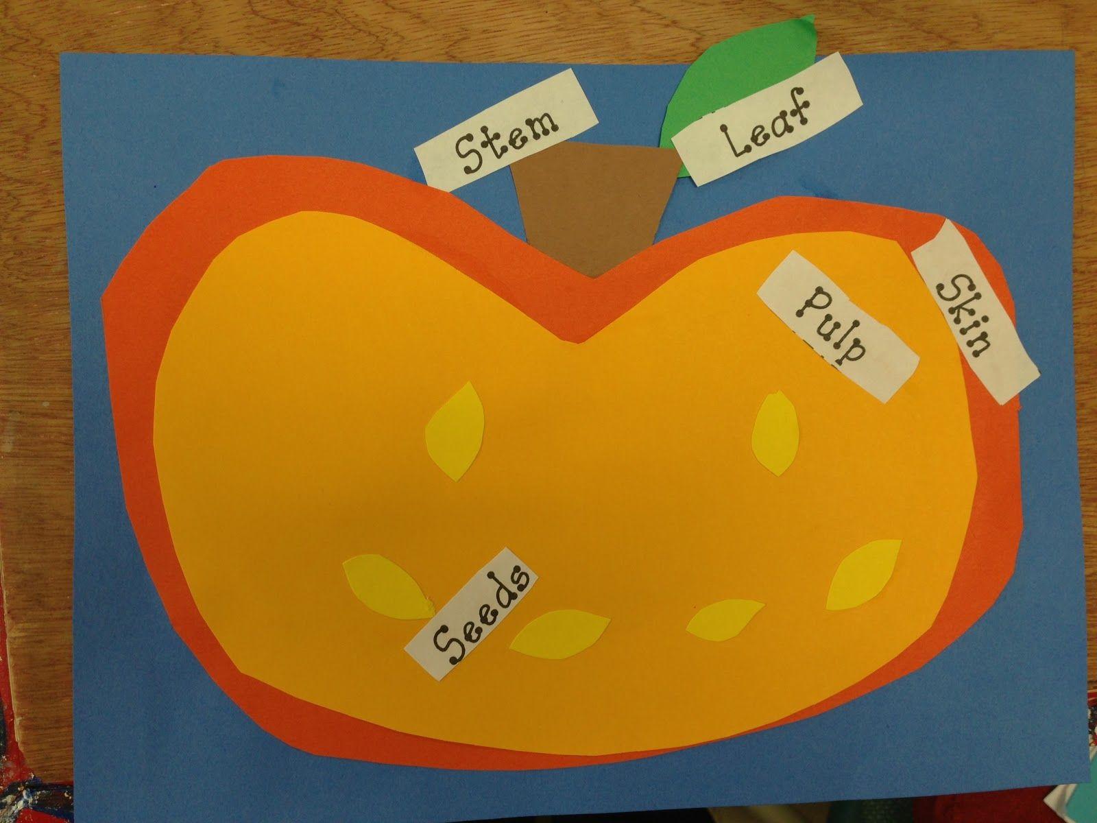 Parts Of A Pumpkin Blogspot