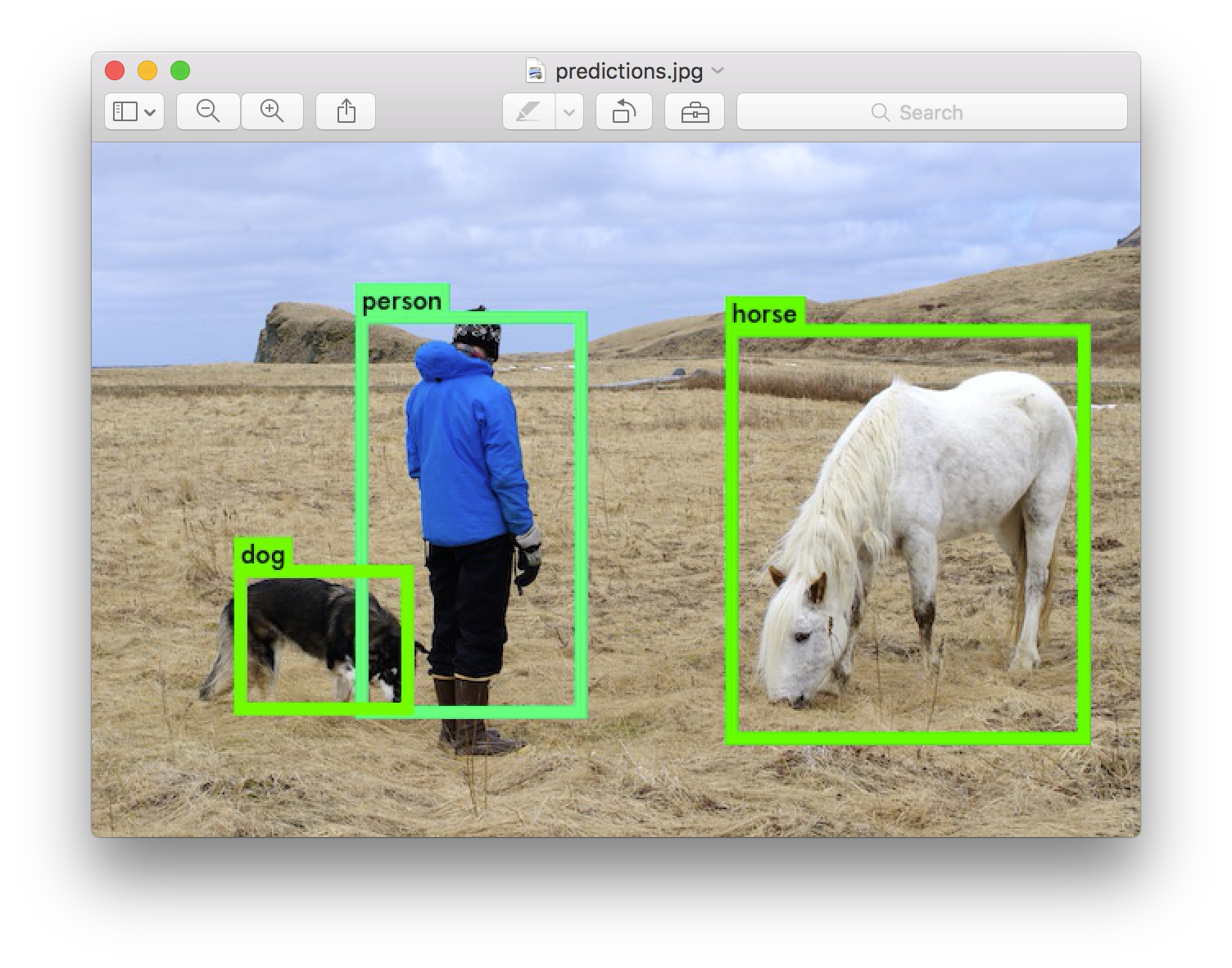 YOLO: Real-Time Object Detection | graphics research in 2019