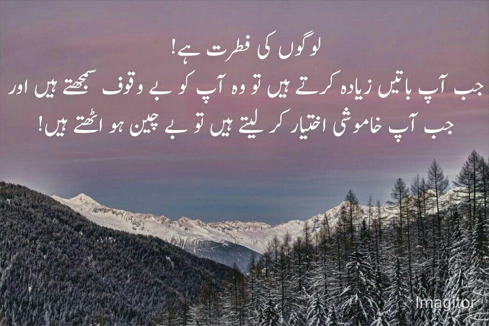 Pin by saira on urdu quotes   Urdu quotes, Life, Meaning ...