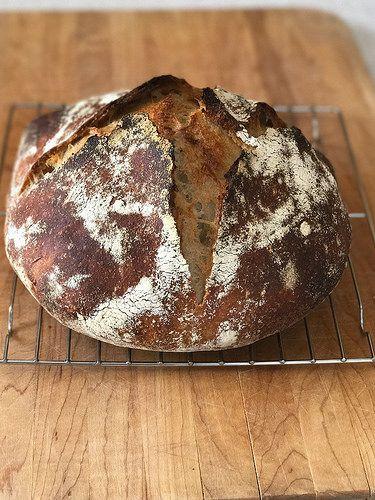Anarchy Acres Wild Bread Sourdough Bread Recipe Sourdough Bread Savory