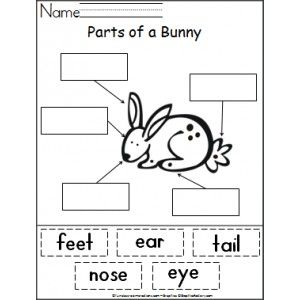 Parts Of A Bunny Cut And Paste Preschool Letter R