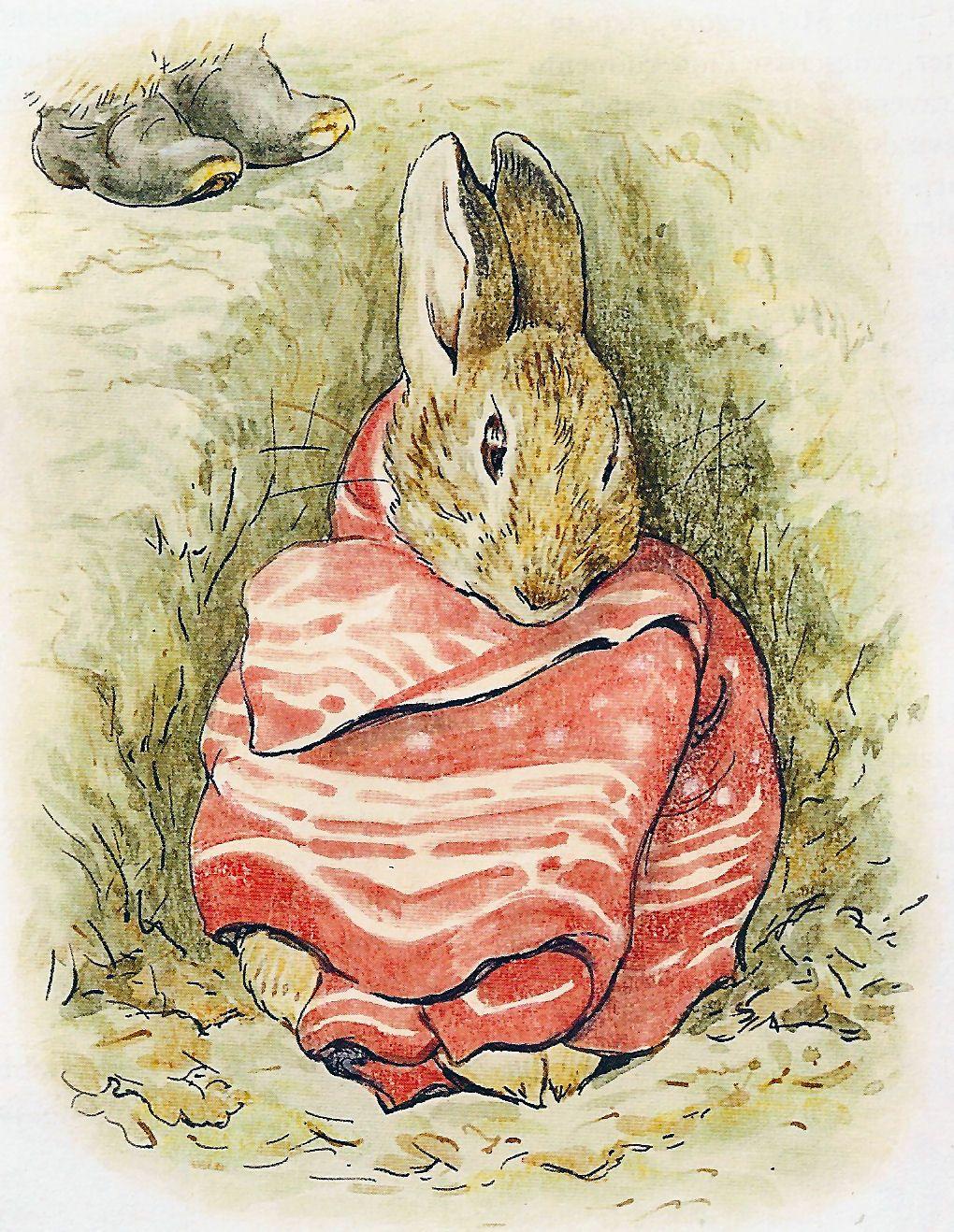 Soloillustratori Beatrix Potter