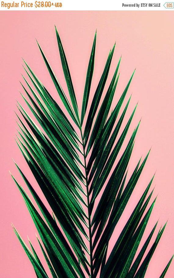 Palm Tree Art Print Photography Mid Century California Pastel Art Print Pink Palm Original P Palm Tree Art Pink Wallpaper Iphone Tree Wallpaper Iphone