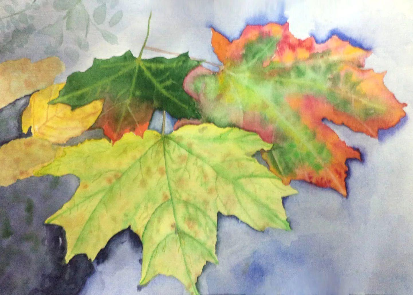 рисунки на листьях клена картинки повышенное потоотделение