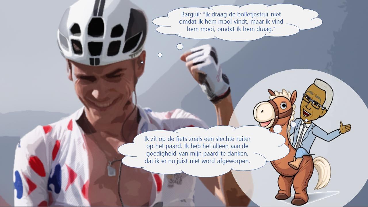 Tour de France Etappe 19 Paarden