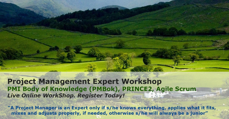 Project Management Expert Live online Workshop