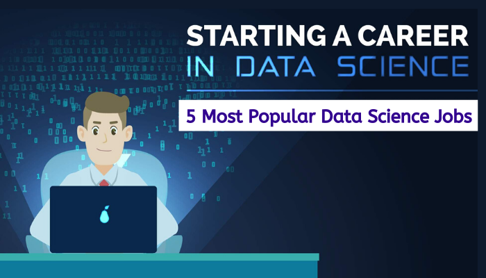 5 Different Types Of Data Science Jobs For Freshers Data Science Software Development Life Cycle Science Life Cycles