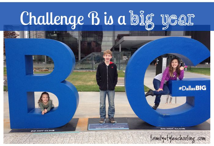 The Four D's of Challenge B via @famstyleschool6