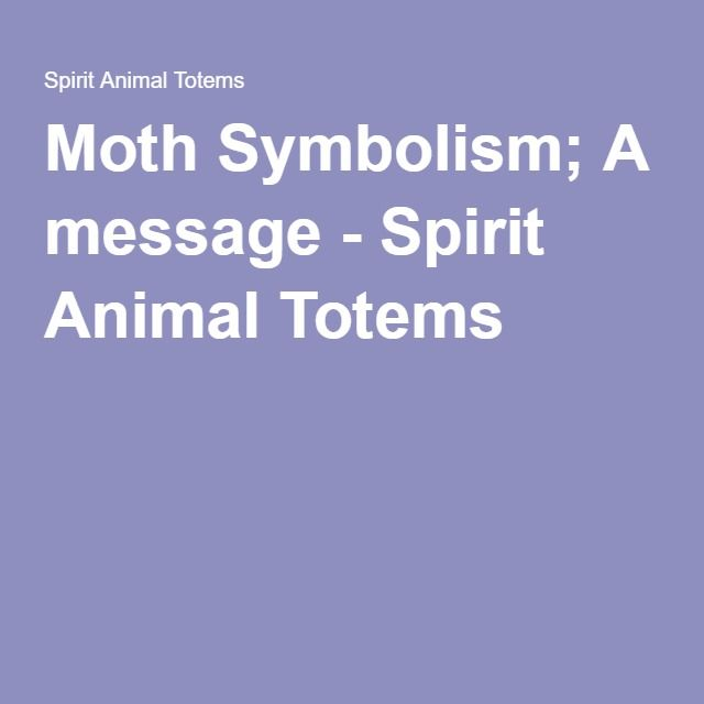 Moth Symbolism A Message Spirit Animal Totems Wicca Bos Animals