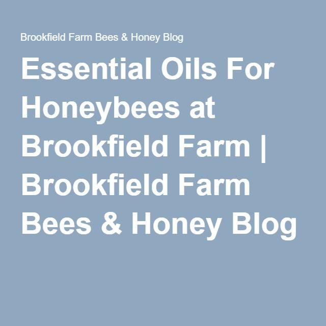 Essential Oils For Honeybees at Brookfield Farm | Brookfield Farm Bees & Honey Blog