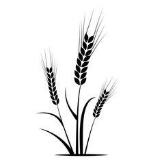 Spiga Di Grano Spiga Grano Silhouette Agricoltura Azienda