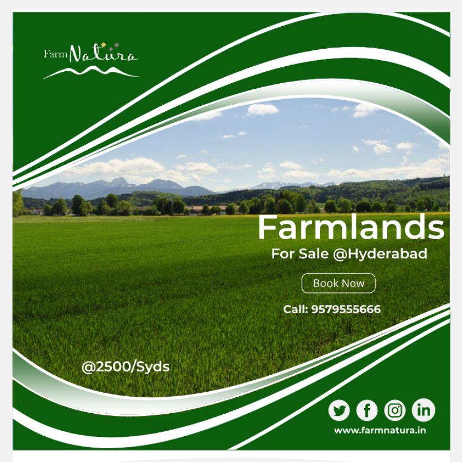 farmnatura.in Farmland for sale, Farmland, Land for sale