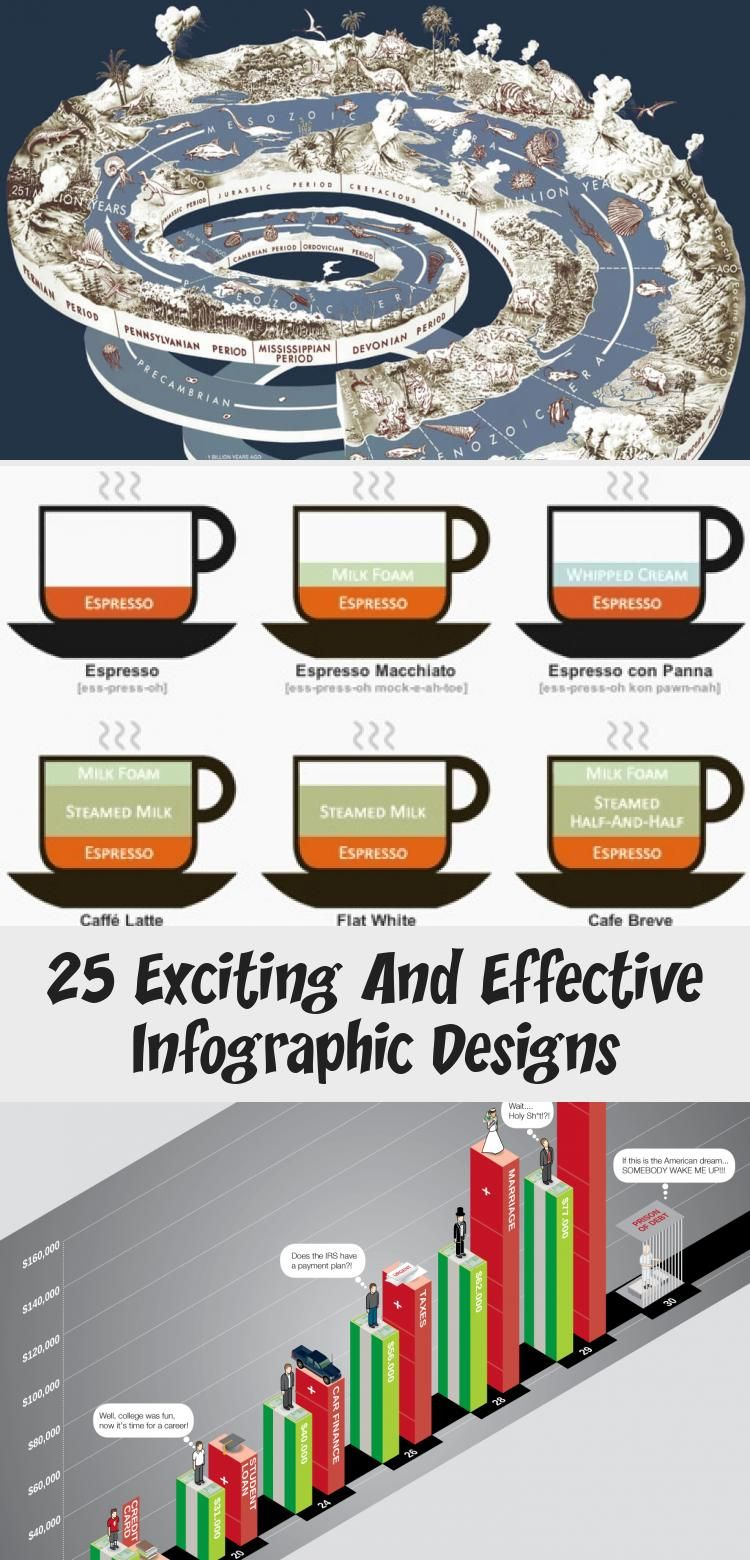 25 Exciting And Effective Infographic Designs The Daily