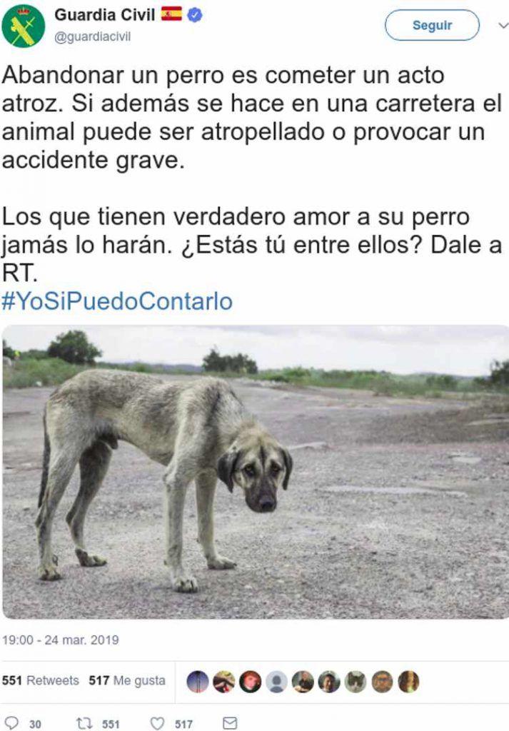 Los Mensajes De Indignacion Cuando La Guardia Civil Trata De Concienciar Contra El Abandono De Perro Little Dogs Dogs Pets