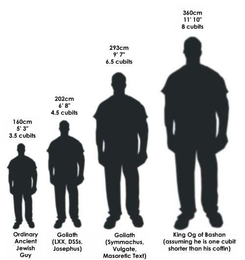 How Tall Were The Biblical Giants Comparative Height Chart Bible Knowledge Biblical Genesis 6