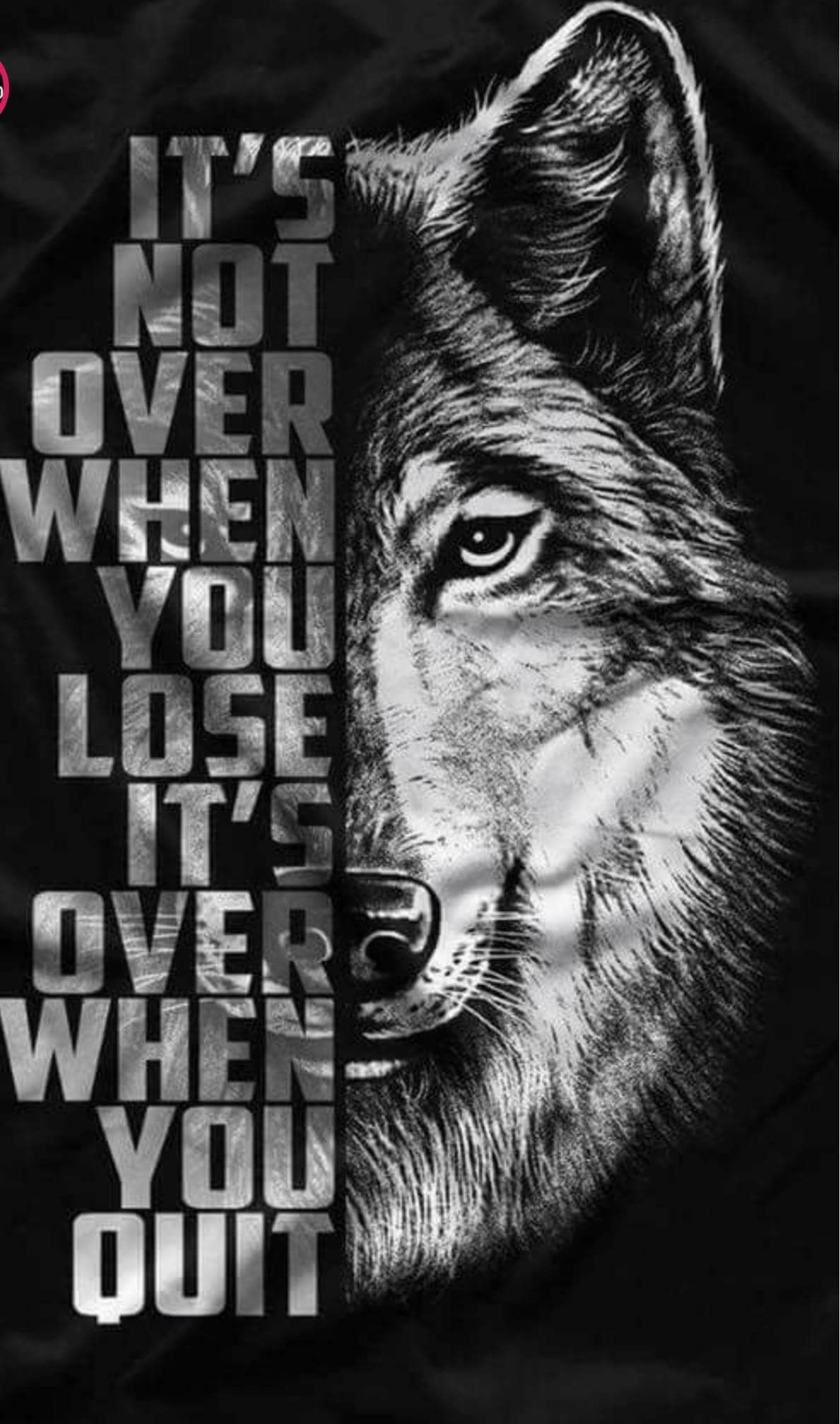 Motivation Ddd Pinterest Inspirational Quotes Quotes And