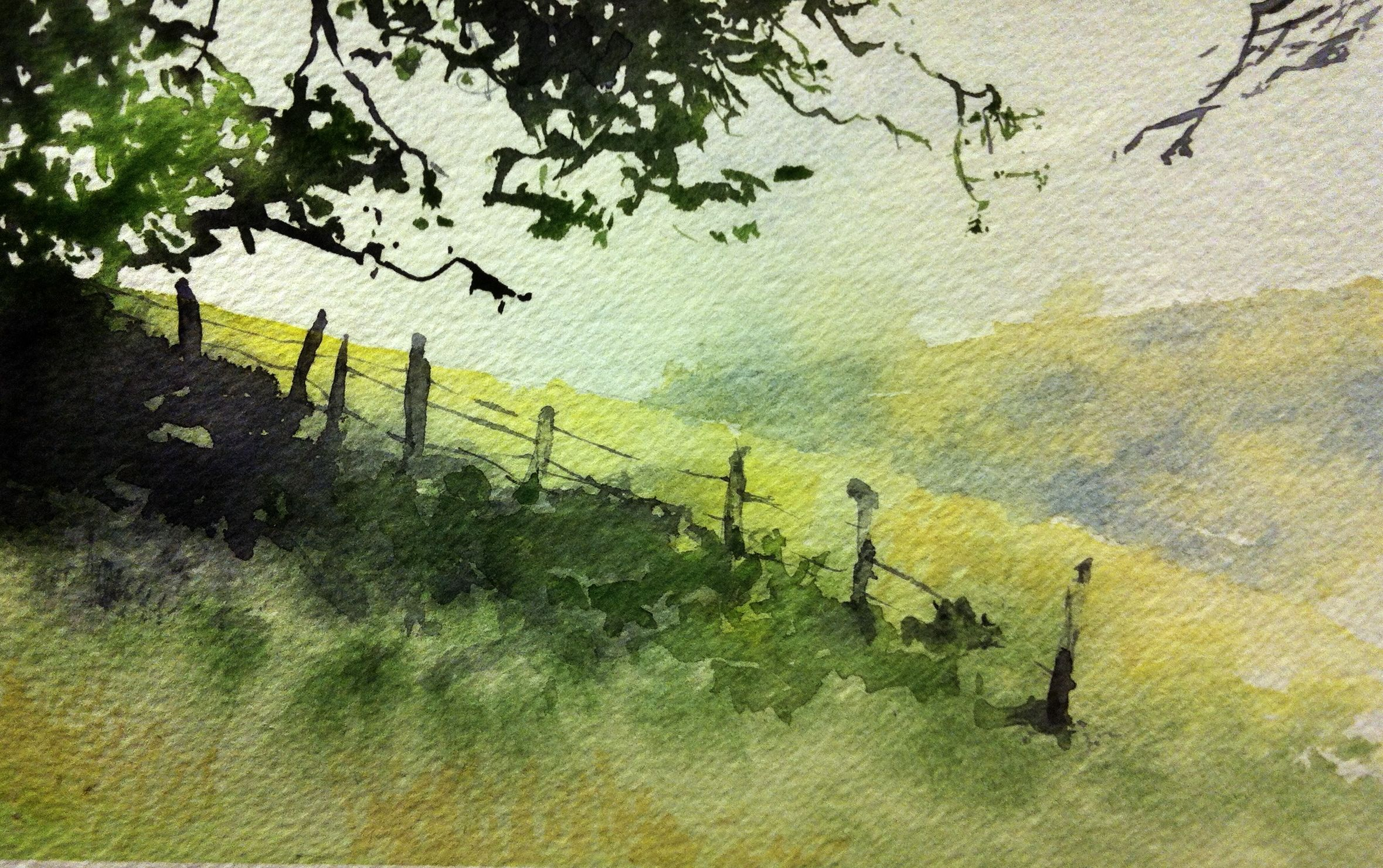 Quick little watercolor sketch near Gilroy, Ca