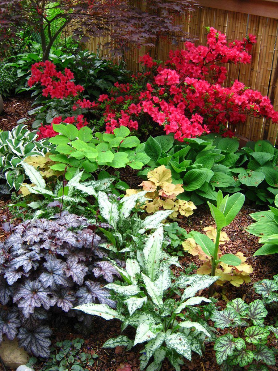 Tim S Side Garden In Ohio Revisited Side Garden Fine Gardening Shade Garden