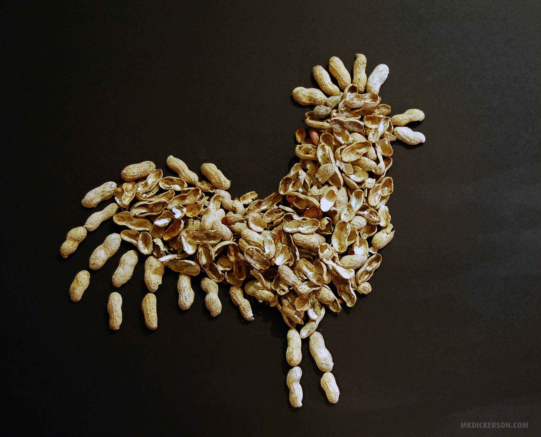 Rodeo Night Bird Made From Peanut Shells At The Art