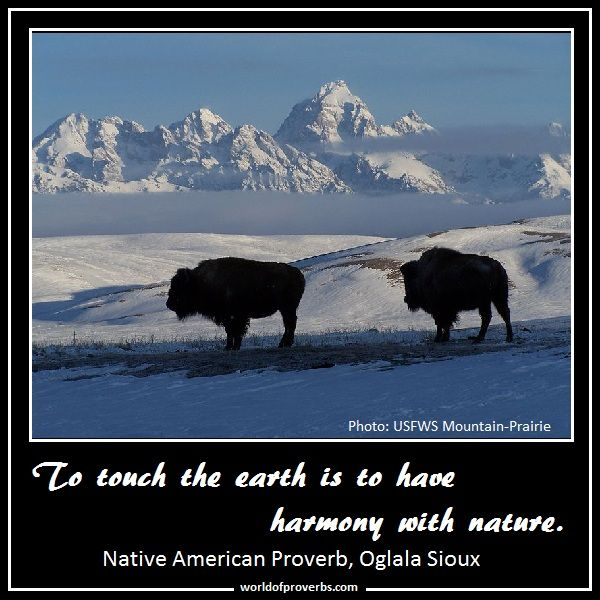 Famous Quotes: To Touch The Earth Is