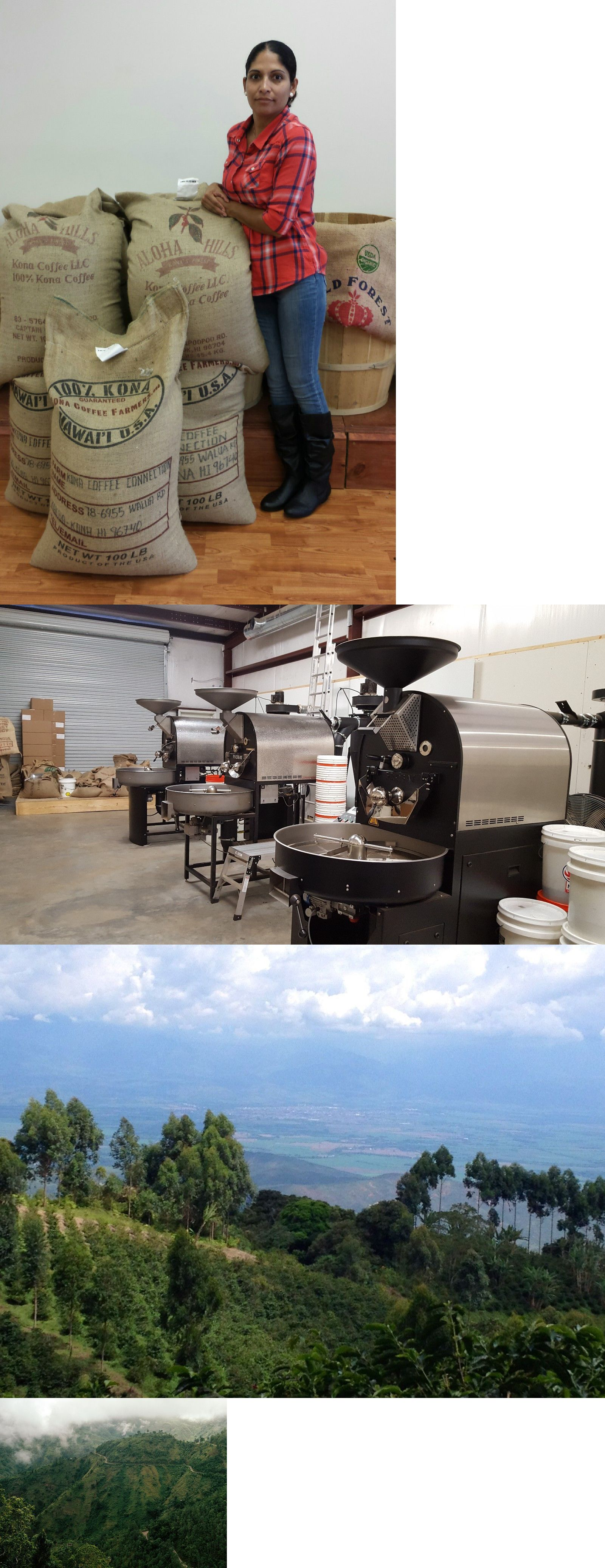 unroasted coffee beans wholesale