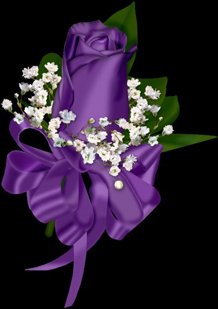 Purple Rose Decoration Transparent Clipart Purple Roses Clip Art Flower Art