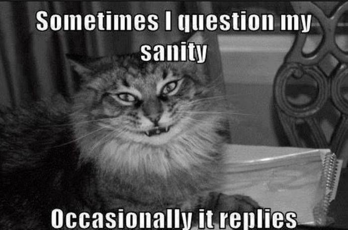 Funny jokes, Lmao quotes, jokes quotes, funny pictures, funniest thing ever, Omg hilarious …For the best funny quotes and pics visit www.bestfunnyjokes4u.com