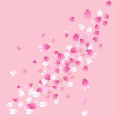 桜の花びら,桜吹雪 ベクターイラスト素材
