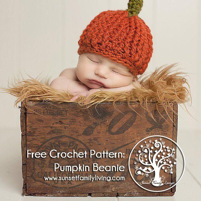 Original Pinner Said Free Crochet Pattern From Sunset Family