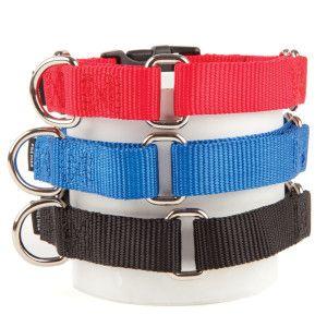 Petsafe Quick Snap Martingale Dog Collar With Images Dog Collar Martingale Dog Collar Martingale
