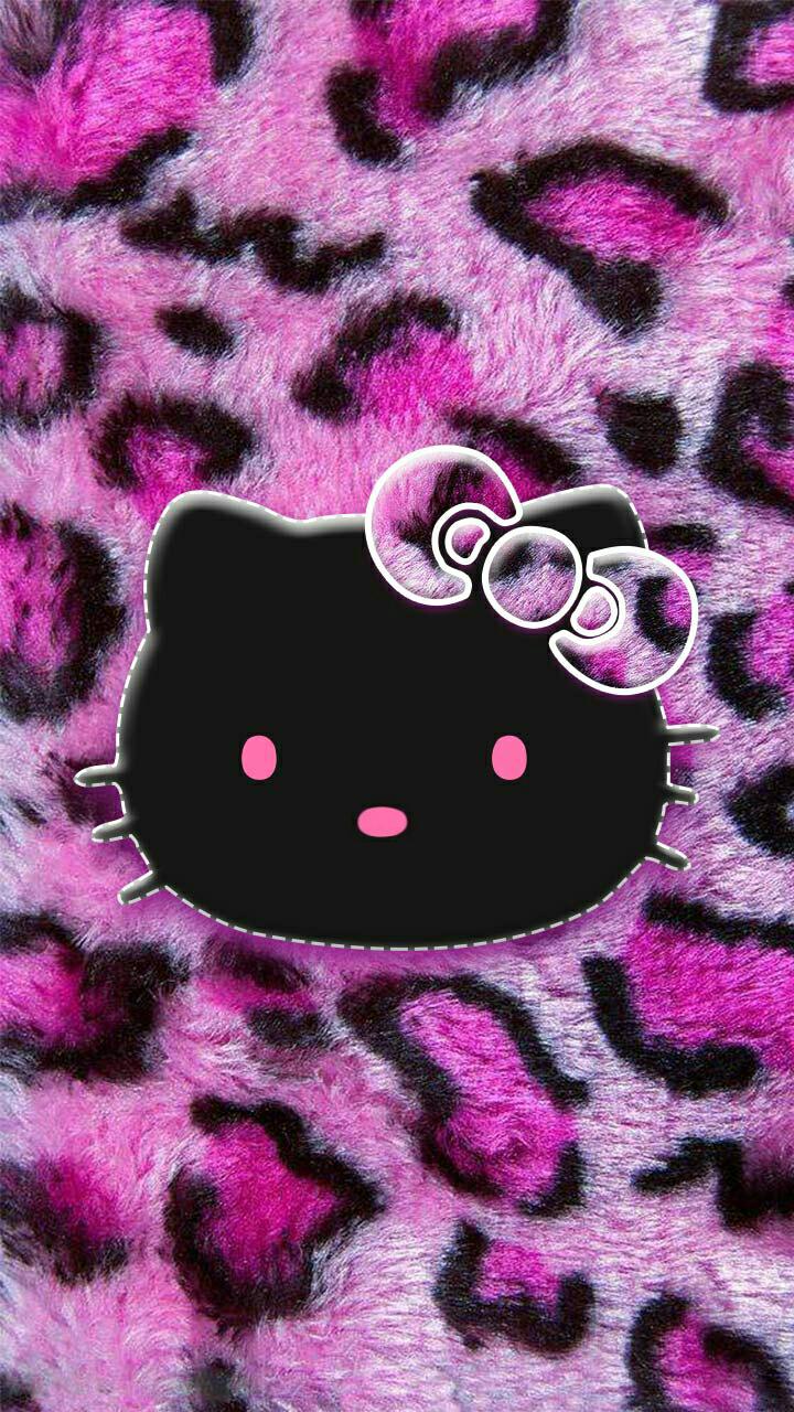 Hello Kitty=^●  。●^=