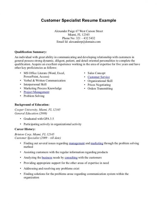 Summary Resume Examples Customer Service