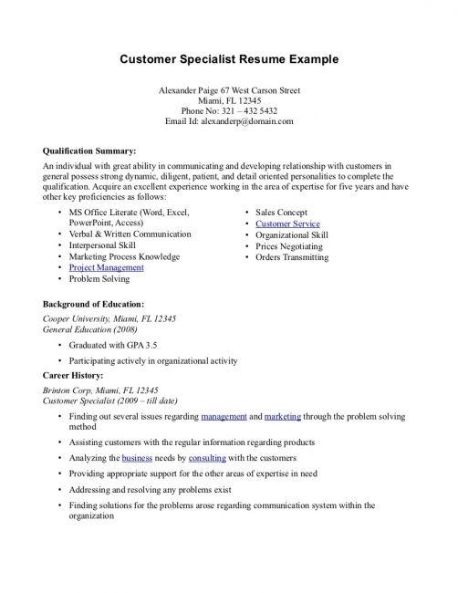 Professional Summary Resume Examples Resume Template Free Customer Service Resume Resume Summary Examples Resume Examples